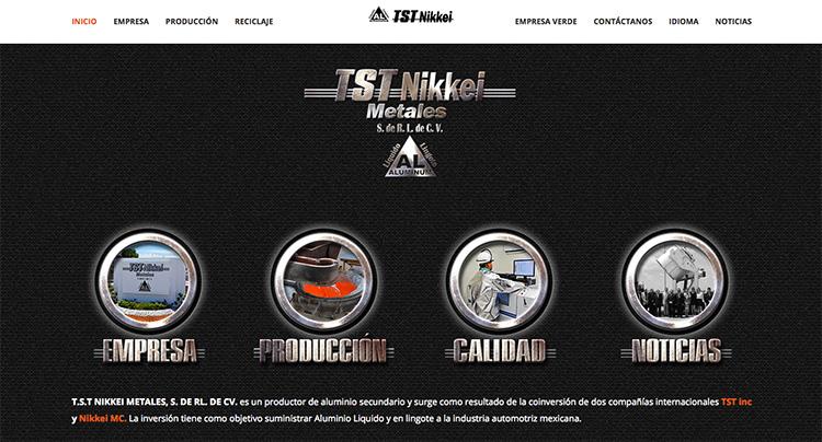 paginas-web-aguascalientes-relief-21